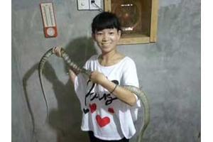 历届学员实践养蛇(四)