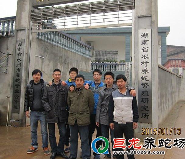 广西养蛇基地