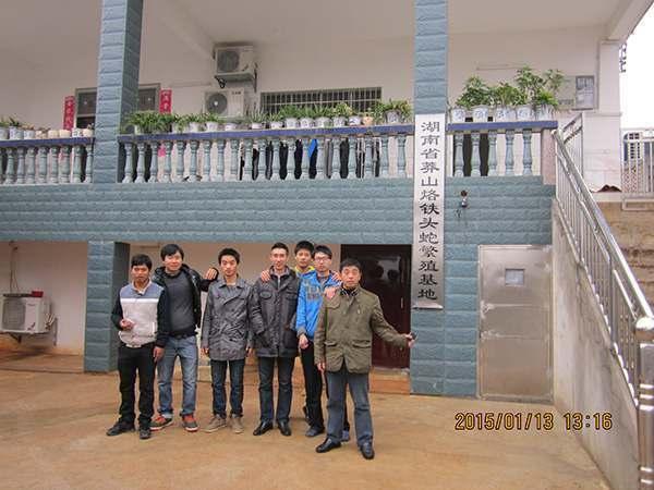 河南省周口市水律蛇养蛇场
