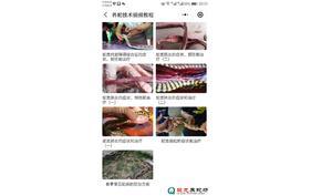 养蛇疾病预防和治疗技术