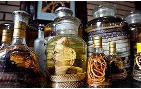 蛇酒的泡制方法